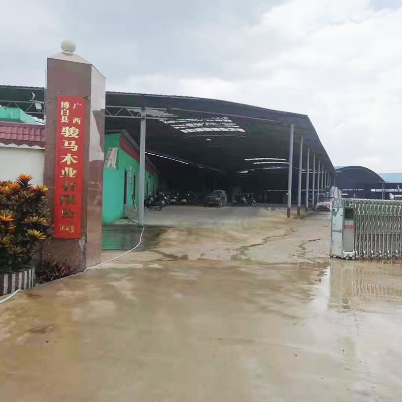 Bobai Horse Base on display