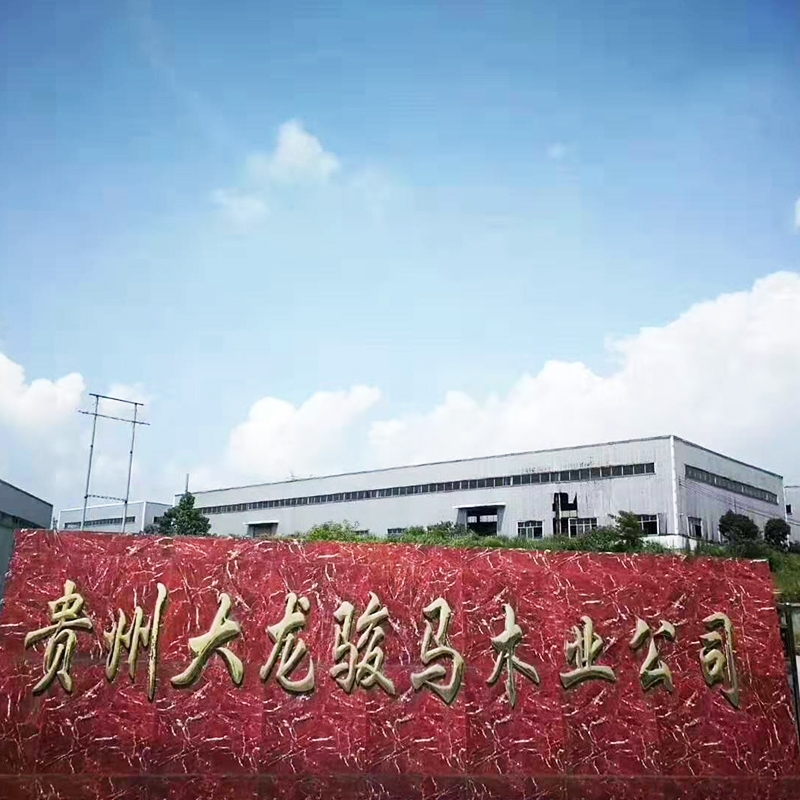 Guizhou Horse Base Exhibition