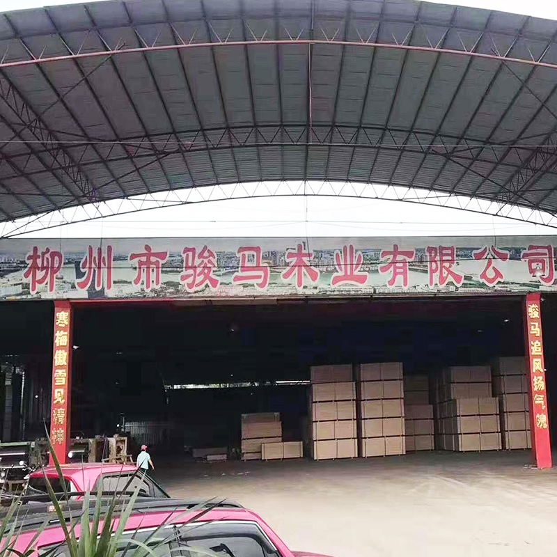 Liuzhou Horse Base on display